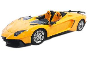 Rc race sport auto |model car 1:14 -geel